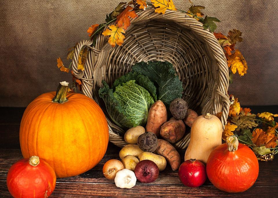 alimentación en otoño